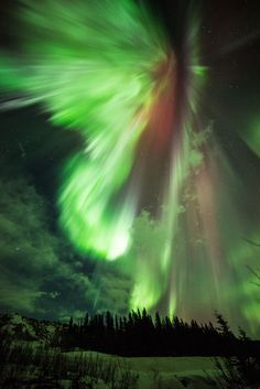 Aurora over Donnelly Creek, Alaska - Week's Best Space Pictures: Solar Storm and a Cosmic Iris
