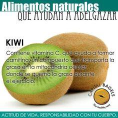El kiwi ta ayuda a mantenerte fit. Entérate cómo! #HealthyFood