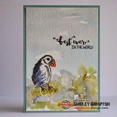 It's our final day of the STAMPlorations April Release Spotlight Week . Today we're turning the spotlight on the other set that I design. Crazy Bird, Clear Stickers, Animal Cards, Bees Knees, Watercolor Cards, Distress Ink, Digital Stamps, Clear Stamps, Paper Crafting