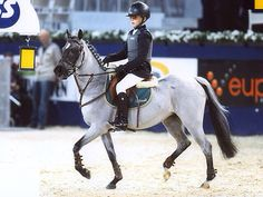 Equestrian ~ look at that pony