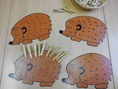 Egels plastificeren. Fijne motoriek = wasknijpers zijn de stekels van de egel. Rekenen = een getal op elke egel en het gelijke aantal knijpers plaatsen.