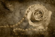 Rose and pearls