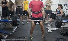 VIVER BEM COM ENERGIA - FITNESS : Treino Para Definição Muscular, Musculação e Exerc...