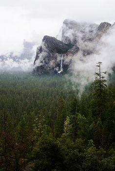 Bridalveil Fall, Yosemite National Park, California: photo by .honeynhero photography, via Flickr