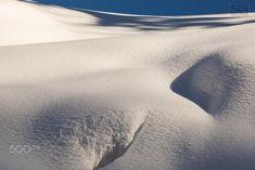 shadows on the snow - shadows on the snow