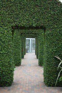 Sculpture Garden Conservatory, Minneapolis Minnesota