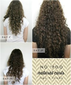 "No 'Poo Testimonial with Naturally Curly Hair. Bonus: ""plopping"""