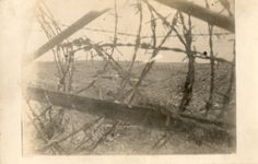Frontline seen from a trench, you can see the utter maze barbed wire. ww1.