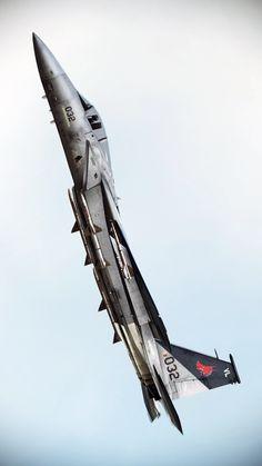 McDonnell Douglas F-15J Eagle (license-built by Mitsubishi) - Japanese Air Self-Defense  Force (JASDF), Japan