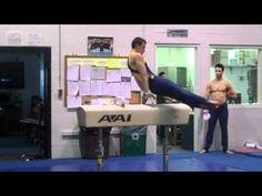 Men's Michigan Gymnastics Team