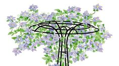 Wrought Iron Trellis for Clematis (Essex Trellis) Arbors Trellis, Garden Trellis, Garden Plants, Iron Trellis, Hanging Plants Outdoor, Hampton Garden, Hydrangea Care, Flowering Vines, Landscaping With Rocks