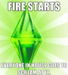Hubby loves to play Sims 3, so this is all too true.