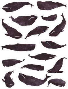 The striking contrast between the dark bodies of the whales and the white negative space around them emphasizes a sense of space, line, and outline.
