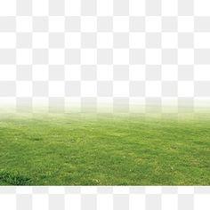 잔디,그린,드넓은 초원,초장 Tree Photoshop, Best Photoshop Actions, Photoshop Images, Photoshop Elements, Landscape Architecture Design, Architecture Graphics, Pretty Presets, Photographie Portrait Inspiration, Light Background Images