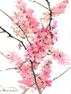 Cherry Blossom Sakura Original watercolor painting by ORIGINALONLY, $40.00
