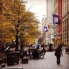 NYU in the fall. lucky and happy to be here