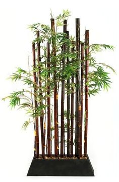Add a decorative touch of nature while dividing your living spaces! | Bamboo Plant Divider cort.com