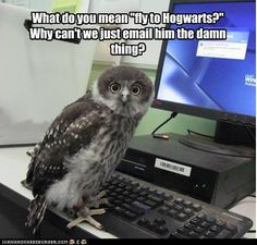 """YOU CAN'T EMAIL HOGWARTS!!! Listen to Hermione and read """"Hogwarts:  A History"""" already!"""