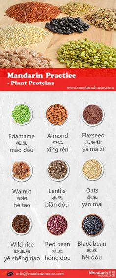Plant Proteins in Chinese.For more info please contact: bodi.li@mandarinhouse.cn The best Mandarin School in China.