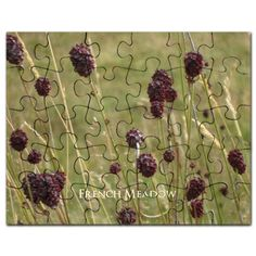 Cute French Meadow Great Burnet Flower Puzzle #flowers #meadow #personalized #gift