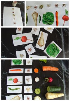 Owl Name Tags, Fruits And Vegetables, Plastic Cutting Board, Montessori, Language, Autumn, Nature, Nutrition Activities, Game