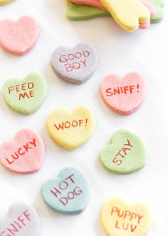 Your dog deserves some love on Valentine's Day too! Make him these treats and you'll be sure to get a thank you lick.
