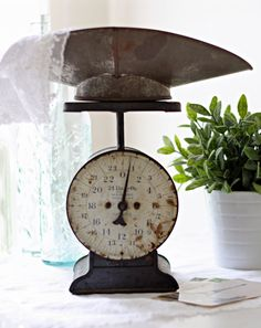 100 year old antique scale! Beautiful! #vintage #scale #antique