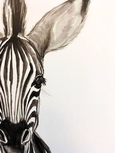 : wasserfarbenkunst watercolor plakat zebra print babyBaby Zebra Watercolor PRINT Baby Zebra Watercolor PRINT Elephant Charcoal Drawing GICLEE PRINT Elephant Decor Elephant Nursery Black and White Art Gift for Her Gift for Mom Artist: Racha Arte Zebra, Zebra Kunst, Zebra Art, Zebra Decor, Giraffe Art, Zebra Drawing, Zebra Painting, Baby Drawing, Drawing Drawing