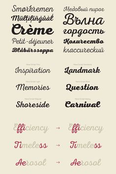A new script typeface in 6 weights and different OpenType features.