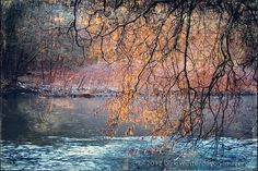 By The River autumn, landscape, hdr, winter, nature, river, texture, peaceful, germany, grunge, mood, haze, atmosphere, horizontal, deutschland, riverbank, tonemapped, shrubs, natur, herbst, flüss, baum, stimmung, landschaft, ufer, wuppertal, büsche, bergisches land, photoshelter, textur, dunst, creative photography, niemand, noone, wupper