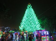 Alumbrados Navideños we provide a guide to Medellín's world-class Christmas lights that for the year in a row won't be along the river this year. Christmas Lights, Christmas Tree, Christmas Ornaments, 3 Things, River, Holiday Decor, Christmas Fairy Lights, Teal Christmas Tree, Christmas Jewelry