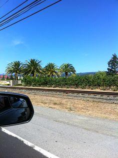 Love Road Trips! (Napa Valley)