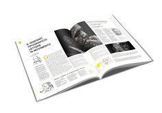 Layout  Magazine by Maria Paola Mauro, via Behance