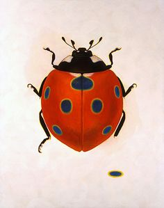 lovely ladybird by Tetsuo Ikeda. Illustrations, Illustration Art, Lady Bug Tattoo, Artist Sketchbook, Insect Art, Beautiful Bugs, Bugs And Insects, Chenille, Mundo Animal