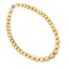 Royal Wedding Jewelry 12mm South Sea Shell Golden Pearl Bridal Necklace 16in 18in