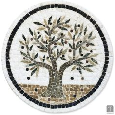 Olive tree in circle