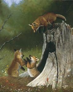 Wildlife Art by Tom Mansanarez ...