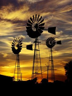 Windmills in South Africa at dusk