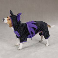 Halloween Bat Costume for Dogs by Casual Canine |TrendyDogBoutique.com