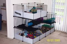 Discussion forum for Guinea Pig Cages (Cavy Cages), Care, Housing, Diet, Health and Adoptables Diy Bunny Cage, Diy Guinea Pig Cage, Bunny Cages, Pet Guinea Pigs, Guinea Pig Care, C&c Cage, Reptile Cage, Reptile Enclosure, Bunny Room