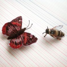 I had a wonderful time at the Nourish festival this weekend. I was exhibiting with the fabulous @strawberry_glen and we swapped a piece of our work. This gorgeous bee is now mine and is making friends with a Red Admiral. Please pop over and see Lucy's work if you don't already know it, magical #nourish16 #handmade #creative #supporthandmade #artistsharing