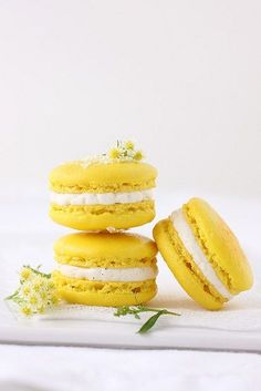 Meyer Lemon Semifreddo and Some Macarons - Cannelle et Vanille inc pate a bombe recipe Lemon Macaroons, French Macaroons, Imagenes Color Pastel, Yellow Foods, Sweet Tooth, Sweet Treats, Food And Drink, Cupcakes, Yummy Food