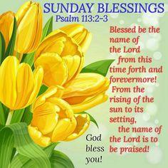 Sunday Blessings! (Psalm 113:2-3)