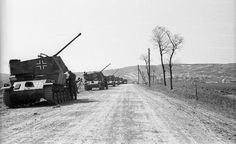 "A close up view of a line of German ""Nimrod"" anti aircraft tanks forming a defense line on a open road. Luftwaffe, Tank Armor, Tank Destroyer, History Online, Armored Fighting Vehicle, Story Of The World, Ww2 Tanks, German Army, Panzer"