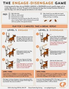 Basic Dog Training - CLICK PIC for Various Dog Care and Training Ideas. training Basic Obedience Training For Dogs - Help Is Here! Training Apps, Dog Training School, Basic Dog Training, Training Your Puppy, Potty Training, Training Classes, Training Schedule, Obedience Training For Dogs, Training Online