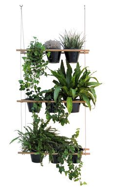 This cool plant hanger can be used in a variety of different ways. Also, it looks like it would be fairly easy to make one yourself if you are at all handy. Love it!