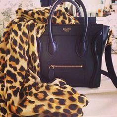 Scarf & Celine bag