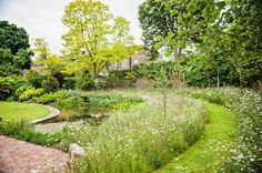 Natural pond bordered with wild flower meadow and a neat, mowed walkway