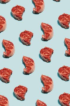 New Meat Art Thoughts 69 Ideas