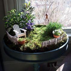 indoor garden | Create Your Own Indoor Fairy Garden.